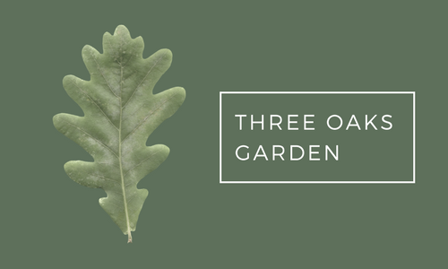 Three Oaks Garden by Kelly Norris - Gardening on the wild side.